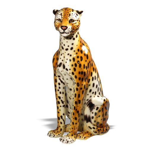 Cheetahs-Tigers